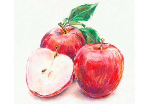 Drawing of apples